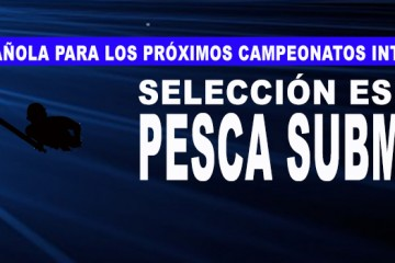 banner seleccion española 2017